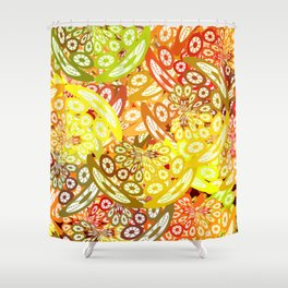 Fruity geometric abstract Shower Curtain