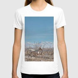 white horse Bolivia T-shirt