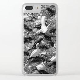 Fou de Bassan #4 Clear iPhone Case