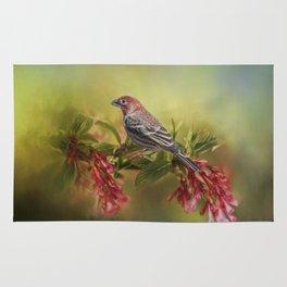Elegant Finch Rug