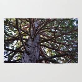 Exotic tree branches Rug
