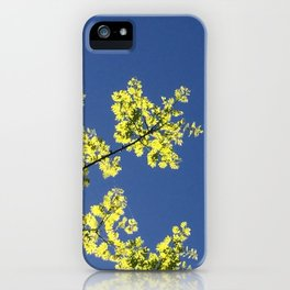 Interrupted Sky iPhone Case