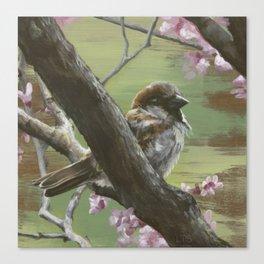 Sparrows of Spring 1 Canvas Print