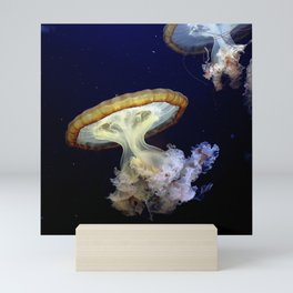 Japanese Sea Nettles Mini Art Print