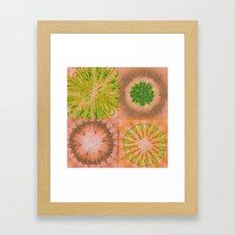 Murdering Nature Flowers  ID:16165-102100-72860 Framed Art Print