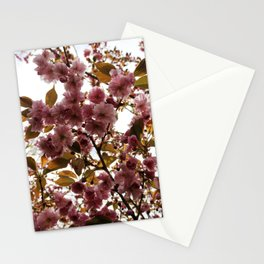 Malus Brandywine Crabapple Blossom Stationery Cards