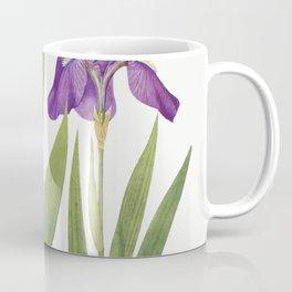 Iris Tectorum and Iris Loptec from The genus Iris by William Rickatson Dykes (1877-1925) Coffee Mug