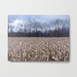 Field of Corn left Behind Metal Print