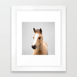 Baby Horse - Colorful Framed Art Print
