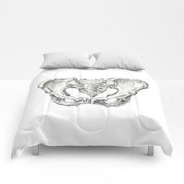 Pelvis Study Comforters