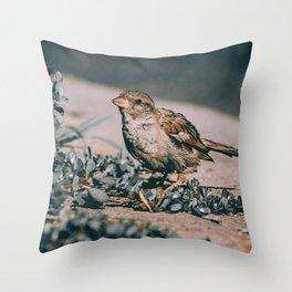 Summer Sparrow. Bird Photograph Throw Pillow