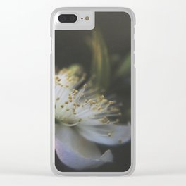 Light Within Clear iPhone Case