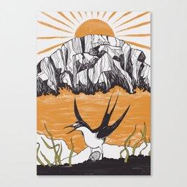 The Birdman Religion Canvas Print