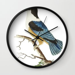 Black-capped kingfisher or Violet-blue kingfisher  from The Naturalists Miscellany (1789-1813) by Ge Wall Clock