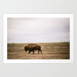 Walking all alone Art Print