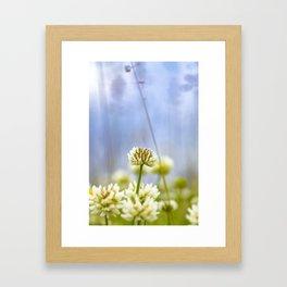 Glover flower Framed Art Print