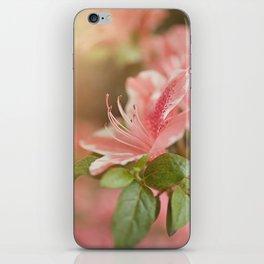 Spring's eruption iPhone Skin