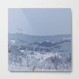Beautiful Winter Landscape Metal Print