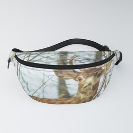 Black-Tailed Buck Fanny Pack