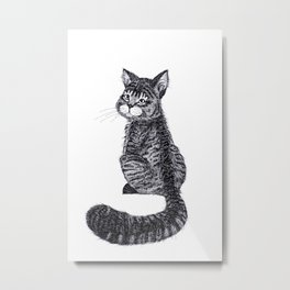 Thomas the Cat Metal Print