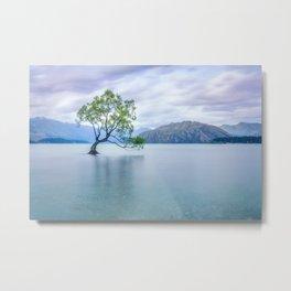 A story of beauty and survival at Lake Wanaka. Metal Print