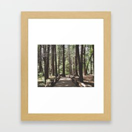 Yosemite Woods Framed Art Print