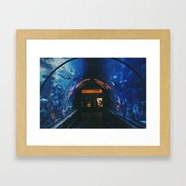 Mandalay Bay Casino and Aquarium Framed Art Print
