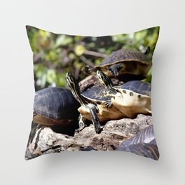Watercolor Turtle, Eastern Painted Turtle 08, Merchants Millpond, North Carolina, Short Stack Throw Pillow