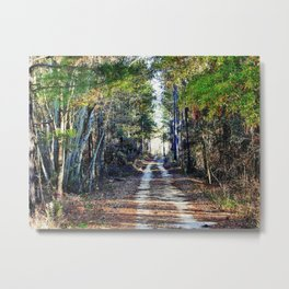 Country Trail Metal Print