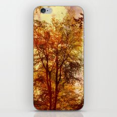 Reach for the Skies. iPhone & iPod Skin
