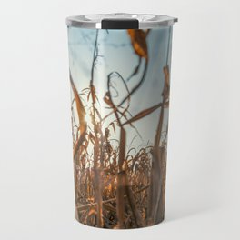 Corn field at sunset in the countryside of Lomellina Travel Mug