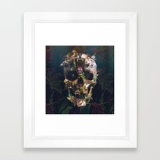 Kingdom Framed Art Print