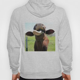 Can I Have a Lick? Hoody