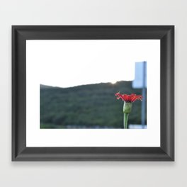 in the way Framed Art Print