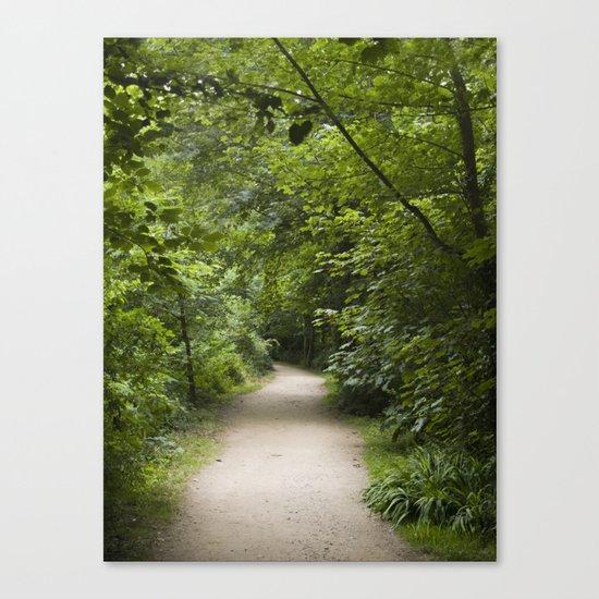 Leafy walk Canvas Print