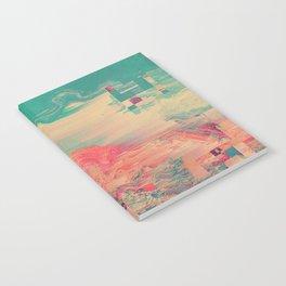 PALMMN Notebook
