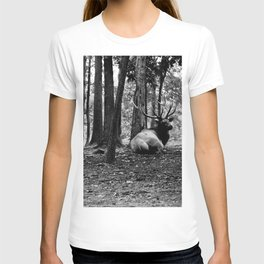 Elk Laying Down in Woods T-shirt