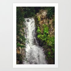 Rainforest Waterfall Art Print
