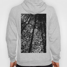 Static Forest Hoody