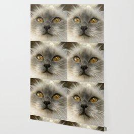 """Cute Kitty (Love cats)"" Wallpaper"