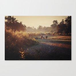 Asia 2 Canvas Print