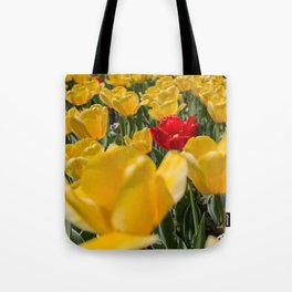 Many yellow tulips and one red Tote Bag