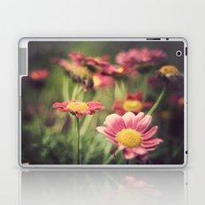 lorak Laptop & iPad Skin