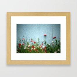 Bloemen. Florence. Framed Art Print