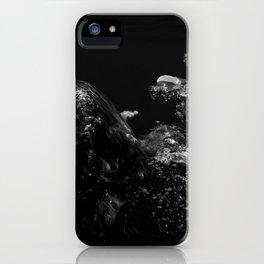 150803-0185 iPhone Case