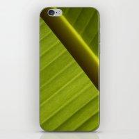 banana leaf iPhone & iPod Skins featuring Banana Leaf by Maria Heyens