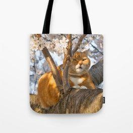 Ginger Cherry Blossom Cat Tote Bag