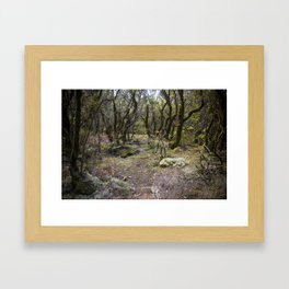 Magic Forest Framed Art Print