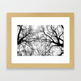 Tree Branch Silhouette Framed Art Print