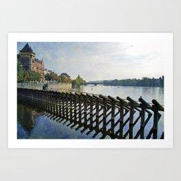 Vltava River Art Print